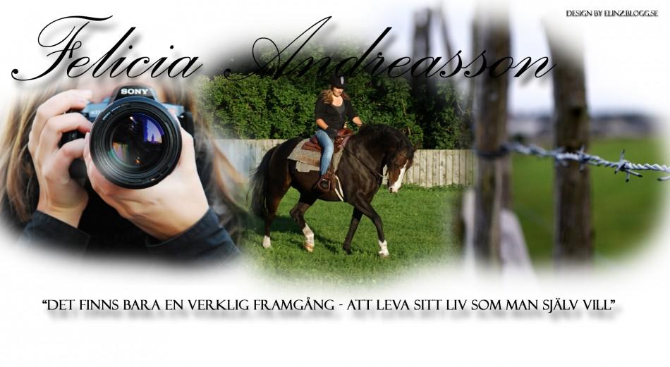 FELICIA ANDREASSON - FOTO -